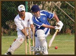 sbobet-asia-cricket